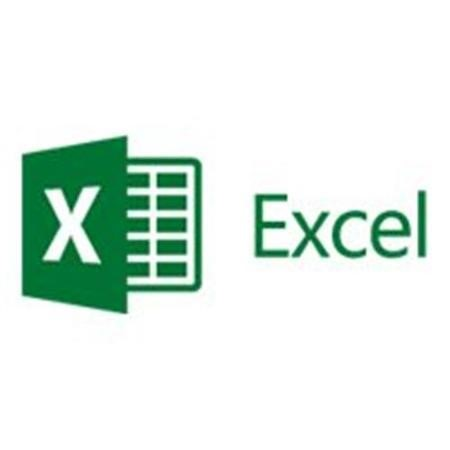 Microsoft Excel 2016 Sngl OLP 1 License NL