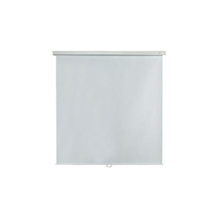 Metroplan Budget Manual Screen - projection screen