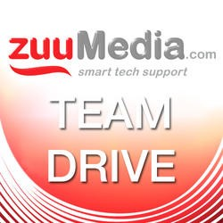 Team Drive (Business Backup and File Server) 25GB - 3 Years TEAMDRIVE25GB/3YR