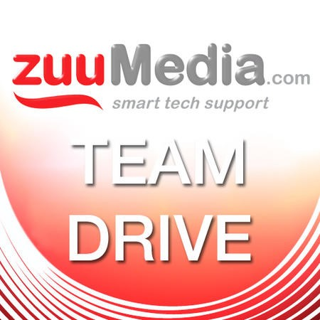 Team Drive (Business Backup and File Server) 25GB - 3 Years