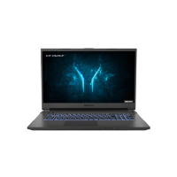 Medion Defender P10 Core i5-10300H 16GB 512GB SSD 17.3 Inch GeForce GTX 1660 Ti Windows 10 Gaming Laptop