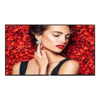 "Philips 55BDL4031D 55"" Full HD Large Format Displays"