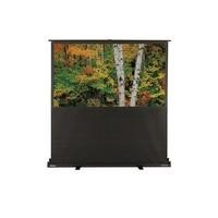 Optoma Panoview DP-3072MWL Portable Lift Projection screen - 72 inch