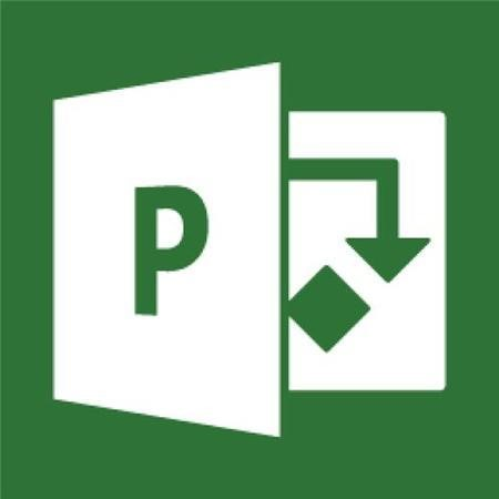 Microsoft Project Professional 2016 Win English 1 License Medialess