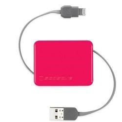 Retractable Charge & Sync Cable wit KeyChain for new Apple devices - Pink