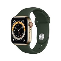 Apple Watch Series 6 GPS + Cellular - 40mm Gold Stainless Steel Case with Cyprus Green Sport Band - Regular