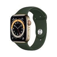 Apple Watch Series 6 GPS + Cellular - 44mm Gold Stainless Steel Case with Cyprus Green Sport Band - Regular