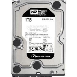 "WD WD RE 2TB 3.5"" 7200RPM 64MB SAS 6Gb/s Internal Hard Drive"
