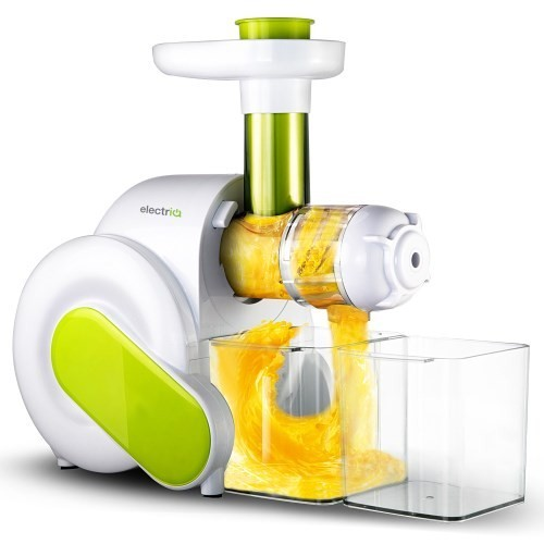HSL600 Masticating Slow Gear Wheatgrass Juicer